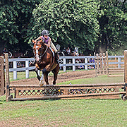Girl on horse jumping fence
