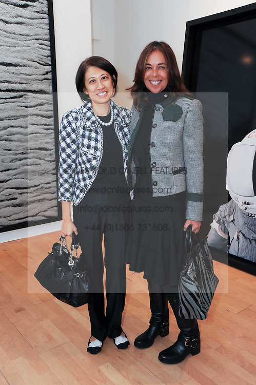 Left to right, SULING MEAD and LEILI HUTH at a pre lunch reception to celebrate the launch of the new Louisa Guinness gallery at Ben Brown Fine Art, Cork Street, London on 18th November 2009.