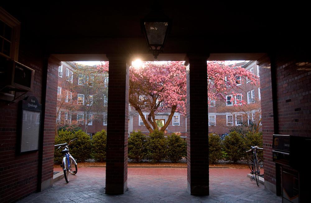 18645Spring Campus: