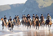 King's Troop Horses Summer Break