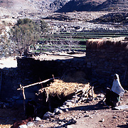 2-4 December 1976<br /> Several levels of roofs. Woman in white chader standing right. Trees and fields in background. Another village on higher terrace in left background.