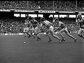 1980 All Ireland Hurling Final Galway v Limerick