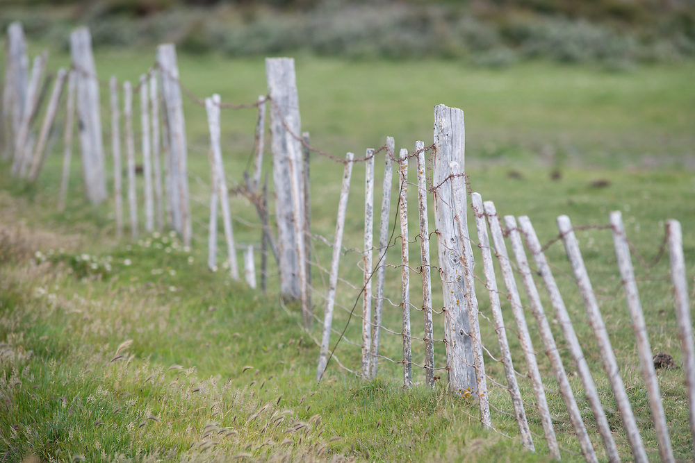 Fence, Chile
