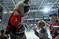 KELOWNA, CANADA - SEPTEMBER 24: Rocky Raccoon, the mascot of the Kelowna Rockets hams it up with young fans on September 24, 2016 at Prospera Place in Kelowna, British Columbia, Canada.  (Photo by Marissa Baecker/Shoot the Breeze)  *** Local Caption *** Rocky Raccoon; mascot;
