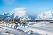 Snowy sage, winter in the Grand Tetons<br />