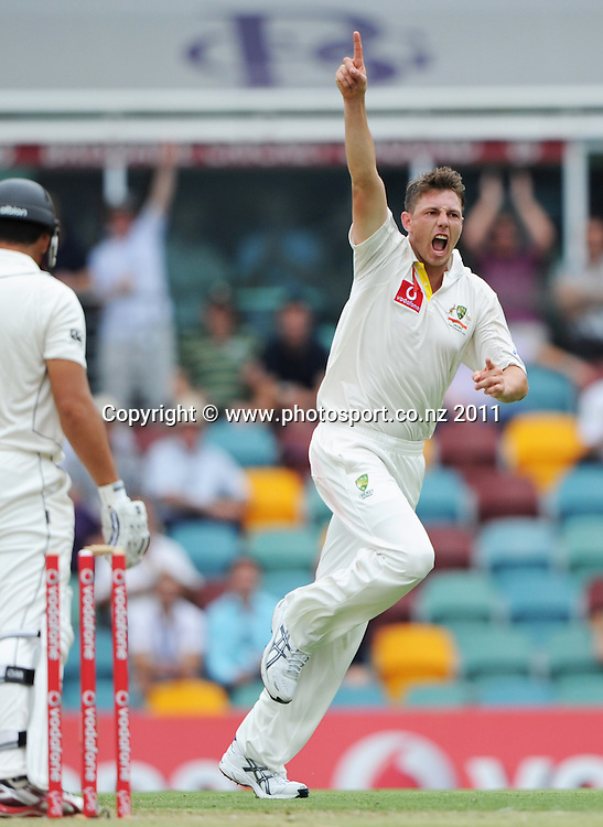 Australian bowler James Pattinson celebrates the wicket of Ross Taylor on Day 1 of the first cricket test between Australia and New Zealand Black Caps at the Gabba in Brisbane, Thursday 1 December 2011. Photo: Andrew Cornaga/Photosport.co.nz