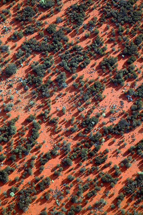 An aerial trip over Uluru/Kata-Tjuta NP. In this series are aerial photographs of desert dune and mulga country as well as Lake Armadeus.