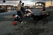 Roma 22  Febbraio 2010.Idroscalo di Ostia,partita di pallone con cane