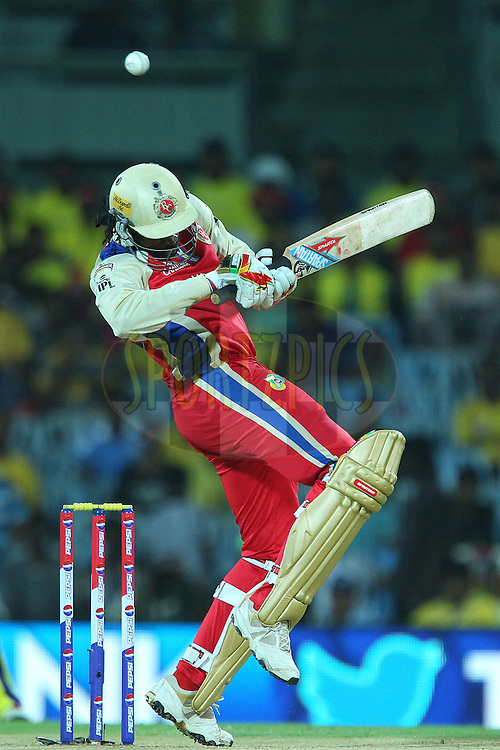 Chris Gayle avoids a delivery from Dirk Nannes during match 16 of the Pepsi Indian Premier League between The Chennai Superkings and the Royal Challengers Bangalore held at the MA Chidambaram Stadiumin Chennai on the 13th April 2013..Photo by Ron Gaunt-IPL-SPORTZPICS  .. .Use of this image is subject to the terms and conditions as outlined by the BCCI. These terms can be found by following this link:..http://www.sportzpics.co.za/image/I0000SoRagM2cIEc