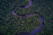 À peine visible, la pirogue des rangers descend la rivière Luile, dans le bloc Nord du parc national de la Salonga. La pirogue motorisée est le moyen de transport le plus rapide dans le parc, irrigué par de nombreux cours d'eau.