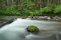Beckler River, Mount Baker Snoqualmie National ForestWashington