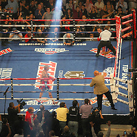 A general overview of the setup as Miguel Cotto of Puerto Rico and Delvin Rodriguez of the Dominican Rebublic square off during their 12-round super welterweight bout at the Amway Center in Orlando, Florida on Saturday, October 5, 2013. Cotto won by knockout in the 3rd round of the match.( Photo/Alex Menendez)