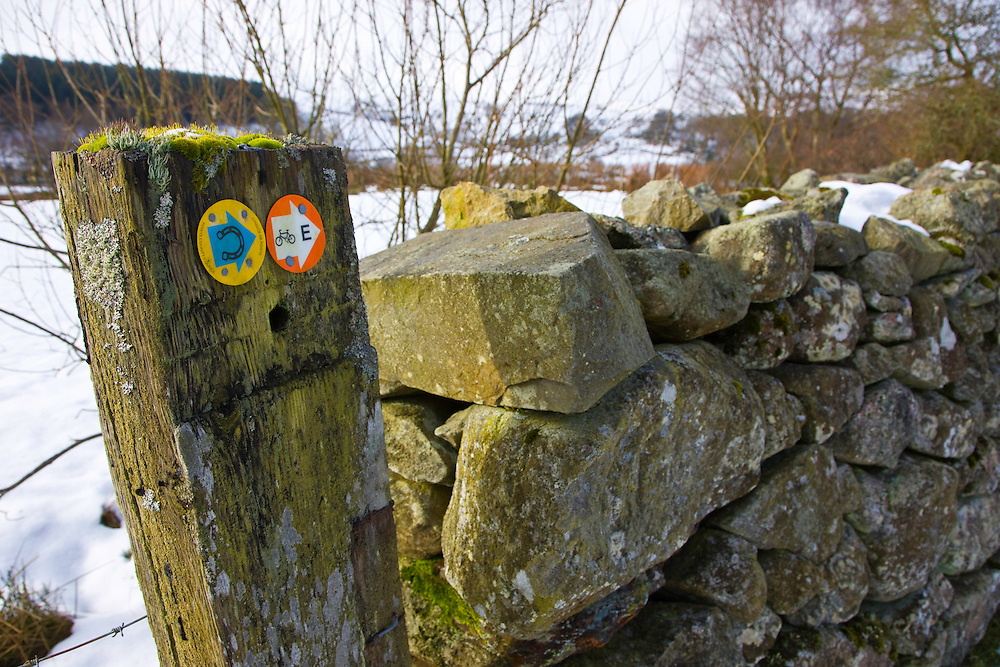 The Elan Valley, Rhayader, Mid-Wales, UK     VALLE DE ELAN, RHAYADER, GALES MEDIO, REINO UNIDO