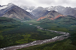 Water from the Polychrome Glacier flows into the area known as the Plains of Murie in Denali National Park and Preserve in Alaska. The view is from the former Polychrome Rest Stop on the park road at the Polychrome Pass and is looking toward the Alaska Range. The plains are named after Adolpf Murie who was a wildlife biologist who did research in the park on wolves and bears. Murie was instrumental in preserving the biological integrity of Denali National Park.