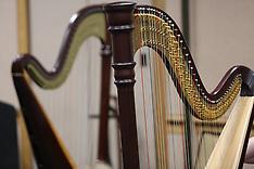 Master Class - Multi Level Harp