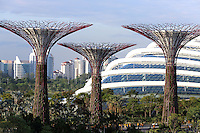 Supertrees and the Flower Dome conservatory at Gardens By The Bay in Singapore.