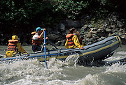Rafting, Nenana River, River, Denali National Park, Alaska