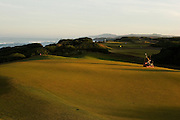 Greenskeeper at dawn, #15 green Bandon Dunes Golf Resort, Bandon Oregon