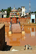 22/12/08 - PONDICHERY - TAMIL NADU - INDE - Hindu Temple between Pondicherry and Auroville - Photo Jerome CHABANNE