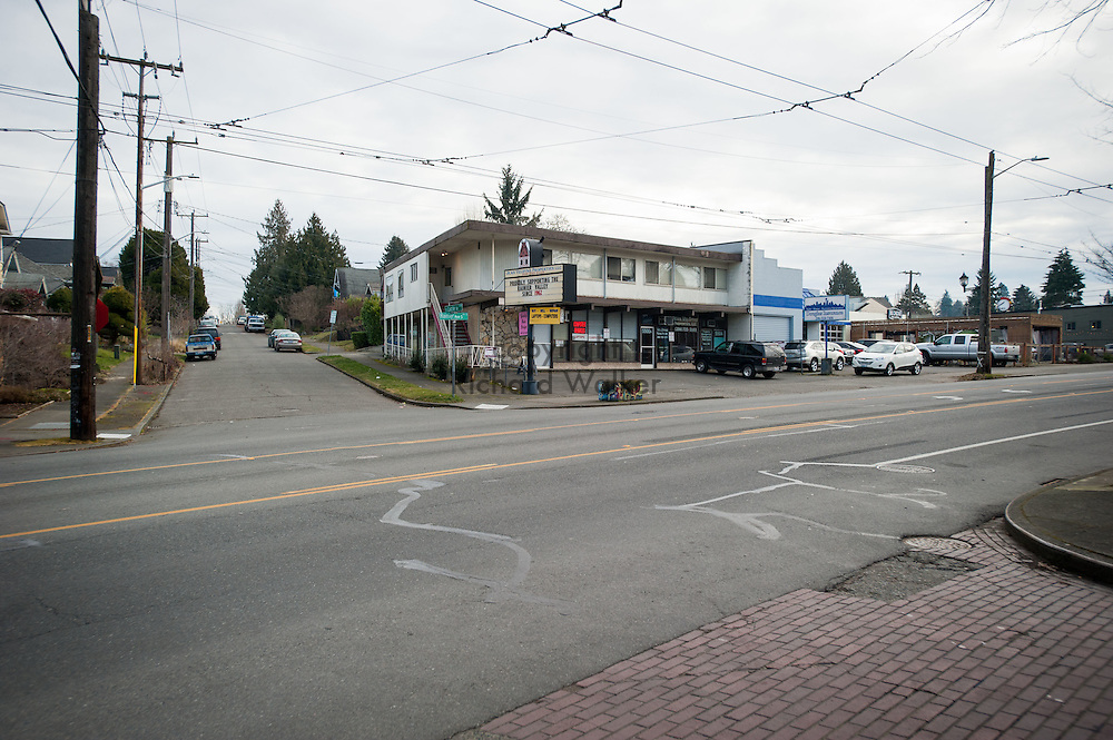 2017 JANUARY 16 - Jean Veldyke Properties LLC at the intersection of S Lucille St, and Rainier Ave S in Hillman City, Seattle, WA, USA. By Richard Walker