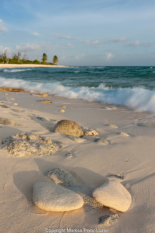 Waves crashing on crushed coral and coral fossils on the beaches of Punta Arena,  Mona Island, Puerto Rico