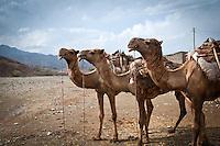 Berahile, Danakil Depression, Ethiopia.