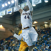 Delaware Forward Jamelle Hagins (44) attempts a dunk in the first half of a regular season NCAA basketball game against George Mason Saturday, March 2, 2013 at the Bob Carpenter Center in Newark Delaware.