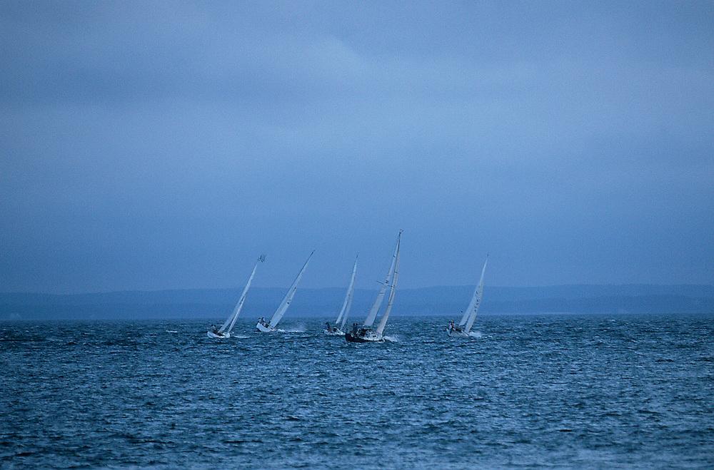 Sailboats Race, Southhold Bay, , Southold, New York, USA
