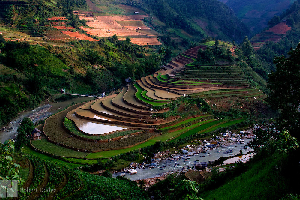 The sun sets on this series of rice paddies carved by human labor on a mountainside in Yen Bai Province, Vietnam. Robert Dodge, a Washington DC photographer and writer, has been working on his Vietnam 40 Years Later project since 2005. The project has taken him throughout Vietnam, including Hanoi, Ho Chi Minh City (Saigon), Nha Trang, Mue Nie, Phan Thiet, the Mekong, Sapa, Ninh Binh and the Perfume Pagoda. His images capture scenes and people from women in conical hats planting rice along the Red River in the north to men and women working in the floating markets one the Mekong River and its tributaries. Robert's project also captures the traditions of ancient Asia in the rural markets, Buddhist Monasteries and the celebrations around Tet, the Lunar New Year. Also to be found are images of the emerging modern Vietnam, such as young people eating and drinking and embracing the fashions and music of the west.
