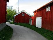 A gravel road passes between barns and sheds at Jomfruland.