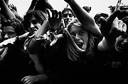 Monsters of Rock, Crowd 1992
