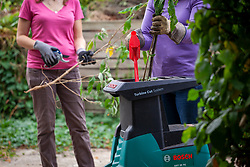 Alternative garden shredding options - Electric shredding machine versus or simple secateurs