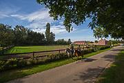 Paarden op de weg<br /> Stal Maarse 2012<br /> © DigiShots