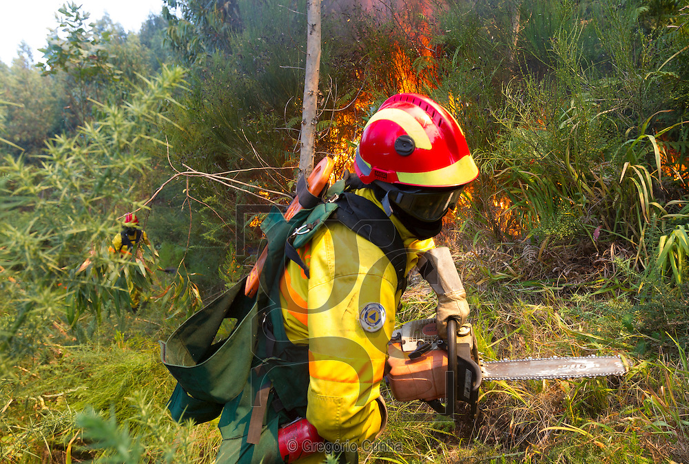 PORTUGAL, Porto Moniz : A fireman tries to extinguish a fire in Achadas da Cruz, close to Porto Moniz, on Madeira Island, on July 20, 2012. Fires raged around the towns of Calheta, Ribeira Brava as well as in Santa Cruz, where one house was destroyed and a health centre, school and youth centre were evacuated as a precautionary measure. The problems started on July 18 evening when high temperatures and strong winds fanned a fire that broke out on the edge of the capital Funchal, gutting two houses and partially burning a third. PHOTO / GREGORIO CUNHA