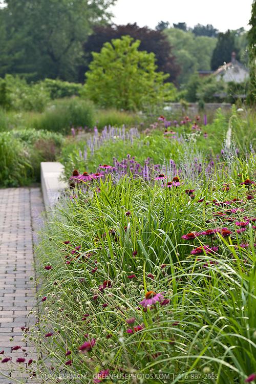 Perennial border along a pathway.