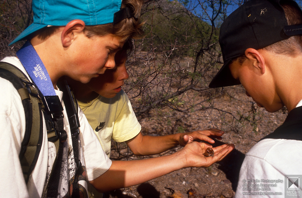 Cooper Scollan, left, and others handle a non-venemous millipede at Camp Chiricahua, Chiricahua Mountains, Arizona..Media Usage:.Subject photograph(s) are copyrighted Edward McCain. All rights are reserved except those specifically granted by McCain Photography in writing...McCain Photography.211 S 4th Avenue.Tucson, AZ 85701-2103.(520) 623-1998.mobile: (520) 990-0999.fax: (520) 623-1190.http://www.mccainphoto.com.edward@mccainphoto.com