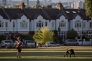 A dog throws a ball for her pet in Ruskin Park, on 8th August 2018, in London, England.