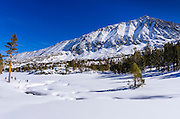 Rock Creek and Mount Morgan in winter, John Muir Wilderness, Sierra Nevada Mountains, California  USA