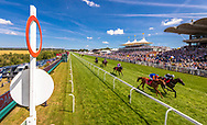 The Betting Podcast Goodwood Handicap Stakes at the Qatar Goodwood Festival.<br /> Picture date: Wednesday August 1, 2018.<br /> Photograph by Christopher Ison ©<br /> 07544044177<br /> chris@christopherison.com<br /> www.christopherison.com