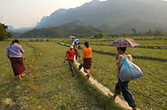 These villagers are walking through a dry rice paddy in stifling heat.  Rice is the main crop of all of Southeast Asia, often supplemented by fish, chicken and pork.