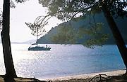 A catamaran pulls into a bay to anchor.