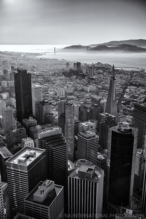 Financial District & Golden Gate Bridge (monochrome)