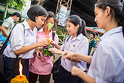 28 NOVEMBER 2012 - BANGKOK, THAILAND: School girls prepare to launch their krathong on Loy Krathong at Wat Yannawa in Bangkok. Loy Krathong takes place on the evening of the full moon of the 12th month in the traditional Thai lunar calendar. In the western calendar this usually falls in November. Loy means 'to float', while krathong refers to the usually lotus-shaped container which floats on the water. Traditional krathongs are made of the layers of the trunk of a banana tree or a spider lily plant. Now, many people use krathongs of baked bread which disintegrate in the water and feed the fish. A krathong is decorated with elaborately folded banana leaves, incense sticks, and a candle. A small coin is sometimes included as an offering to the river spirits. On the night of the full moon, Thais launch their krathong on a river, canal or a pond, making a wish as they do so.    PHOTO BY JACK KURTZ