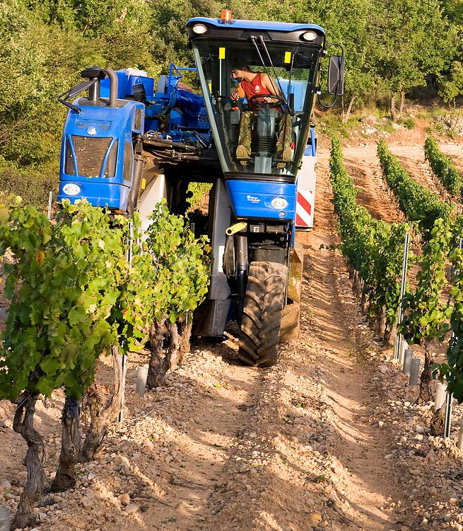 Mechanical harvesting machine harvesting grapes at Chateau de Berne, close to Lorgues, Provence, France.