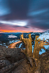 """Donner Lake Sunrise 14"" - Photograph of a vibrant sunrise above Donner Lake and Rainbow Bridge with a old dead stump in the foreground."