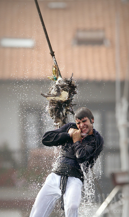 """A contestant hangs onto a goose's neck while the goose is raised and lowered into the water at the port in the northern Spanish Basque village of Lekeitio, 05 September 2006 during the celebration of """"Antzar Eguna"""" (Geese's Day). In what could be seen as a precursor to bungee jumping, contestants have to hold onto the goose for as long as possible while being dunked in the sea. In former times the geese used to be alive."""