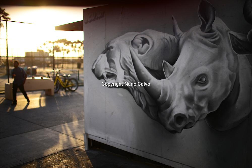 Wildlife graffiti on wall at Venice Beach, California.