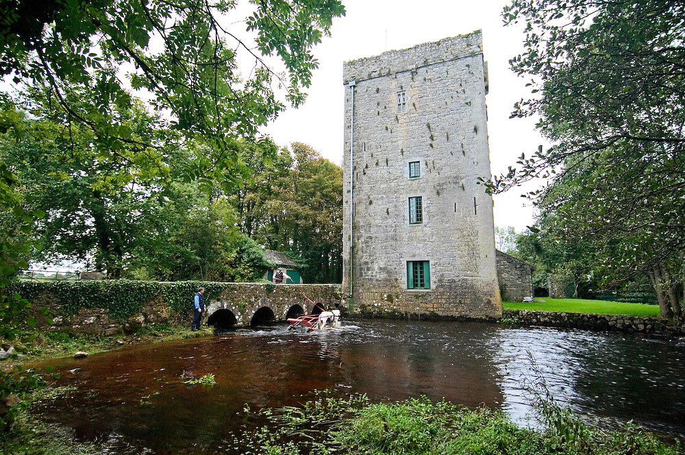 Trotting horses from Ballinasloe Fair refresh in river by Thoor Ballylee, once home of poet W.B.Yeats, near Gort, Galway Ireland