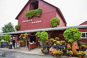 Bauman Farms, Gervais, Oregon, USA<br /> <br /> Foto: Christina Sj&ouml;gren