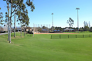 Softball Fields at Bill Barber Park